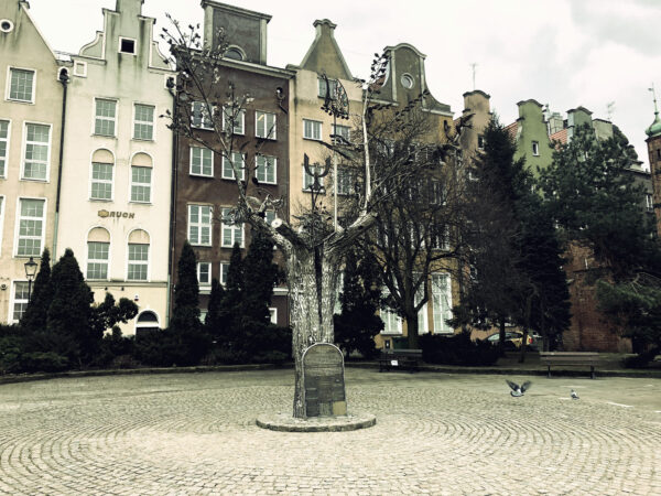 Drzewo Millenium Gdańska