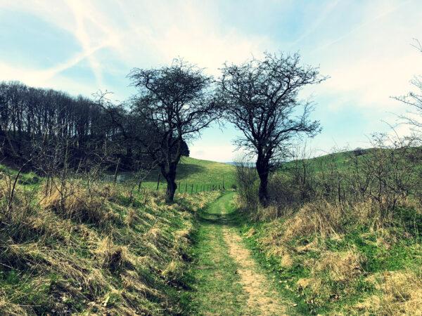 Hilleshögs dalar