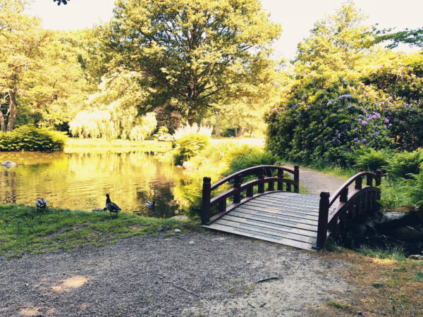 Krapperups Park